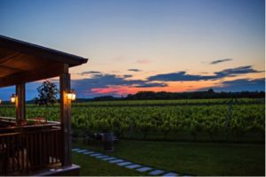 wine tours long island